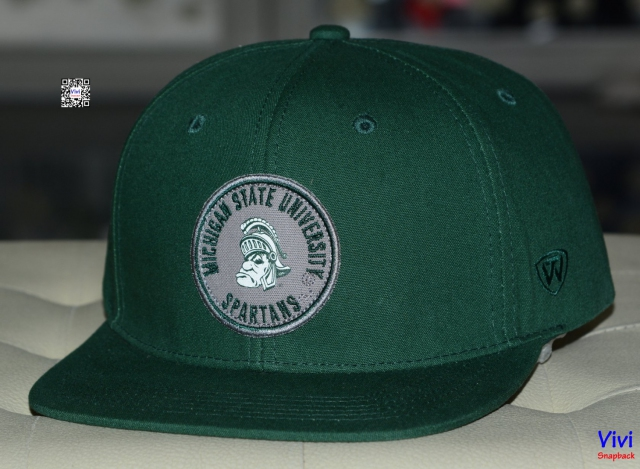 Top of the World Michigan State Spartans Snapback