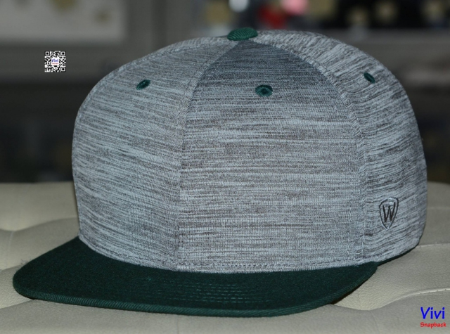 Top of the World 2Tone (Gray/Green) Snapback
