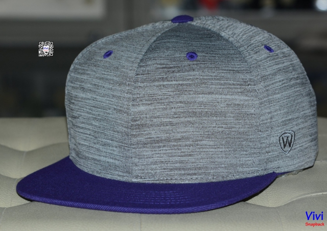 Top of the World 2Tone Gray/Purple Snapback