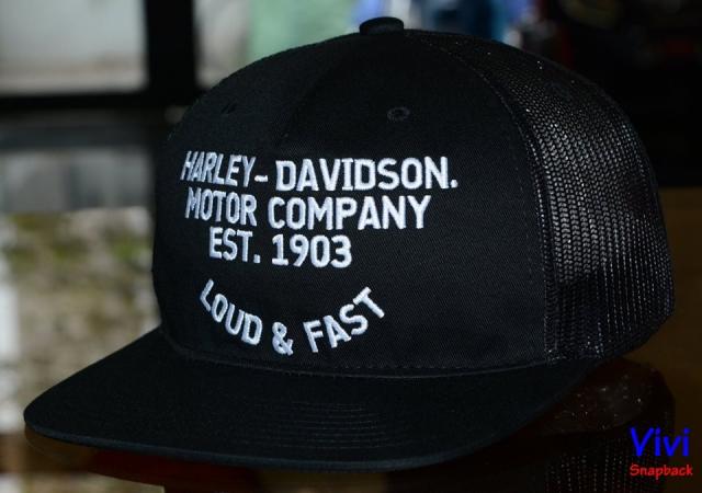 Harley Davidson Trucker Snapback