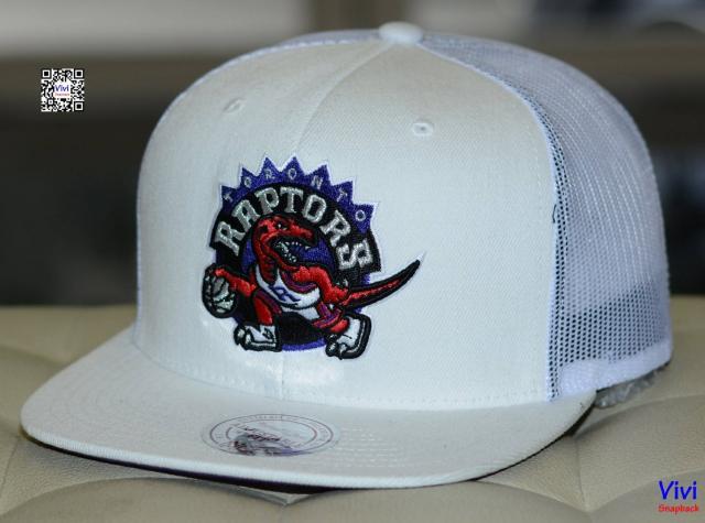 Mitchell & Ness Toronto Raptors Logo Trucker Snapback
