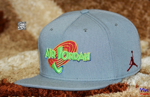 Nike Jordan X Space Jam Snapback  In Grey