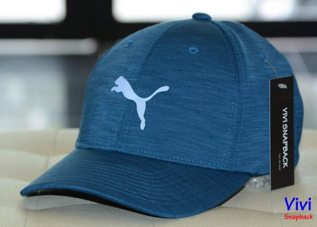 Puma Delta Fitted Golf Cap