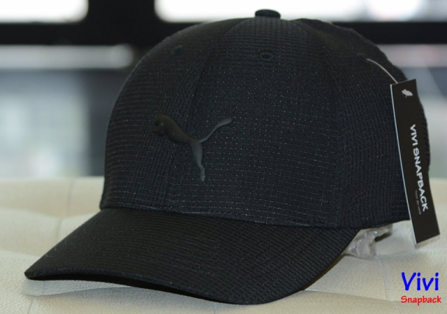 Puma Cubic Fitted Cap Black