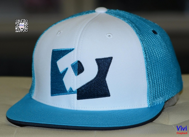 Demarini Trucker Fitted Snapback