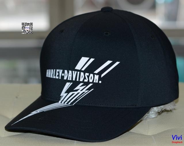 Harley Davison Flexfit Delta Fitted Cap