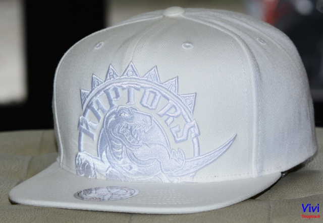 Mitchell & Ness Toronto Raptors Cropped XL Logo Snapback Full White